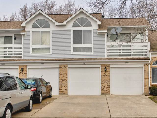 1283 Ranch View Court, Buffalo Grove, IL 60089 (MLS #10724536) :: Suburban Life Realty