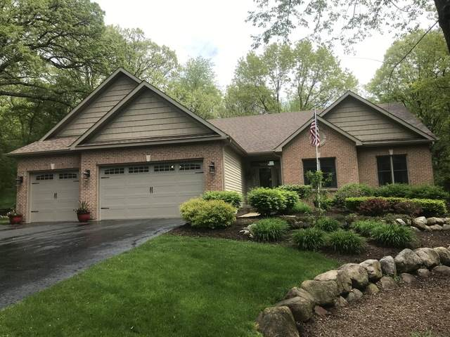 11218 E Riviera Drive, Spring Grove, IL 60081 (MLS #10724538) :: Property Consultants Realty