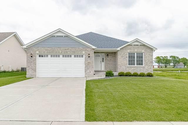 6051 Park View Drive, Bourbonnais, IL 60914 (MLS #10724629) :: Angela Walker Homes Real Estate Group