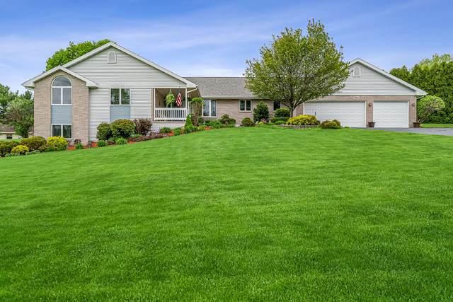 9910 Badger Trail, Belvidere, IL 61008 (MLS #10724767) :: Jacqui Miller Homes