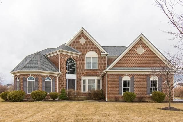 17 Wood Oaks Drive, South Barrington, IL 60010 (MLS #10724899) :: Suburban Life Realty