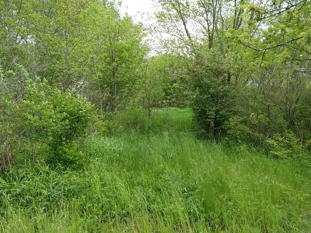 000 Hawthorn Road, Marengo, IL 60152 (MLS #10724907) :: Jacqui Miller Homes