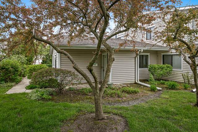 746 Whitesail Drive #746, Schaumburg, IL 60194 (MLS #10724922) :: Angela Walker Homes Real Estate Group