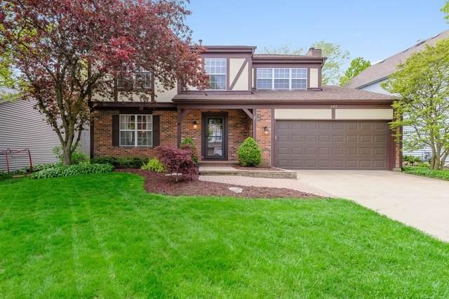 205 Knightsbridge Drive, Mundelein, IL 60060 (MLS #10724981) :: Property Consultants Realty