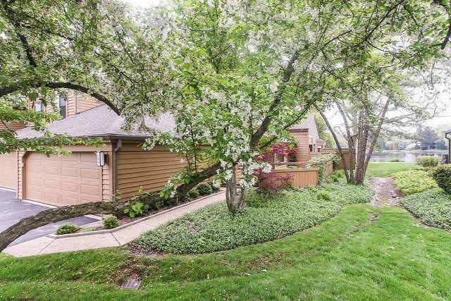 709 Woodbridge Court #709, Lake Barrington, IL 60010 (MLS #10725306) :: Ani Real Estate