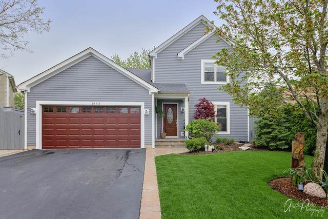 1463 Carriage Lane, Lake Villa, IL 60046 (MLS #10725572) :: Property Consultants Realty
