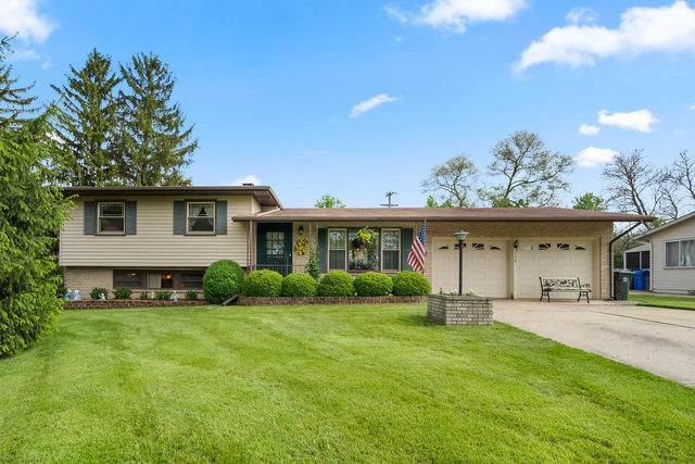 530 Williams Drive, South Elgin, IL 60177 (MLS #10725593) :: Littlefield Group