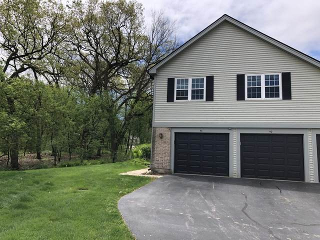 40 Linden Court, Cary, IL 60013 (MLS #10725841) :: The Spaniak Team