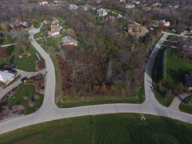 49 Rusty Road, Lemont, IL 60439 (MLS #10725873) :: The Wexler Group at Keller Williams Preferred Realty