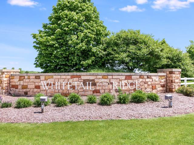 Lot 28 Whitetail Place, Yorkville, IL 60560 (MLS #10725943) :: Property Consultants Realty