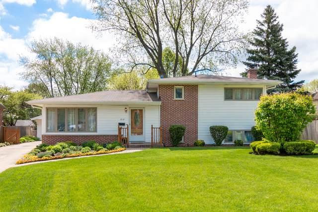 517 E Highland Avenue, Mount Prospect, IL 60056 (MLS #10726059) :: Touchstone Group