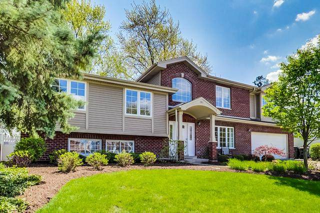 1011 W Alleghany Drive, Arlington Heights, IL 60004 (MLS #10726121) :: Property Consultants Realty