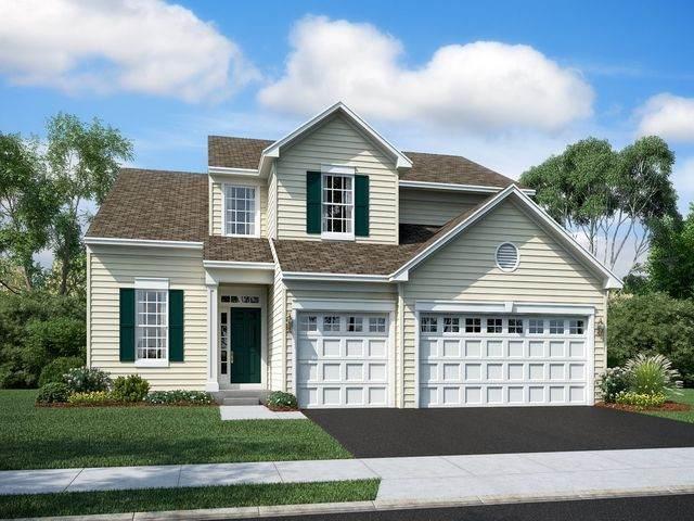 12 Telluride Lane, Volo, IL 60020 (MLS #10726184) :: Suburban Life Realty