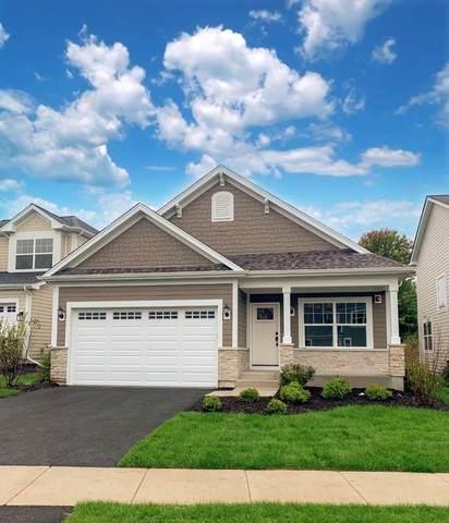 1469 Somerset Place, Barrington, IL 60010 (MLS #10726667) :: Suburban Life Realty