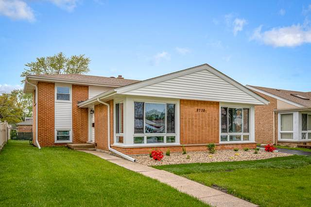 8738 N Osceola Avenue, Niles, IL 60714 (MLS #10726893) :: Helen Oliveri Real Estate