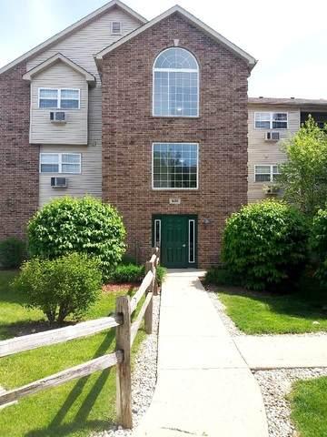 430 Cunat Boulevard 1G, Richmond, IL 60071 (MLS #10727036) :: Touchstone Group