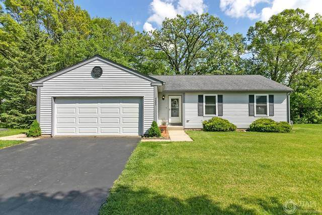 4003 Newport Drive, Island Lake, IL 60042 (MLS #10727601) :: Ani Real Estate