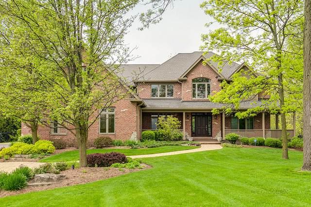 26542 N Topanga Trail, Hawthorn Woods, IL 60047 (MLS #10727821) :: Helen Oliveri Real Estate