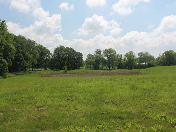 LOT 4 S Bowgren Circle, Elburn, IL 60119 (MLS #10727921) :: The Dena Furlow Team - Keller Williams Realty