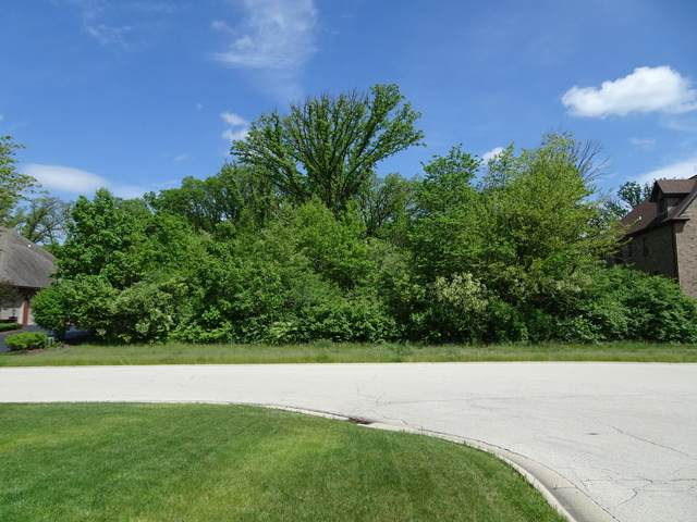 12300 Wedgewood Drive, Homer Glen, IL 60491 (MLS #10727944) :: Jacqui Miller Homes