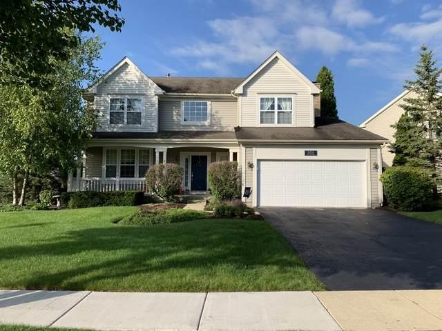 18156 Meander Drive, Grayslake, IL 60030 (MLS #10727945) :: Ryan Dallas Real Estate