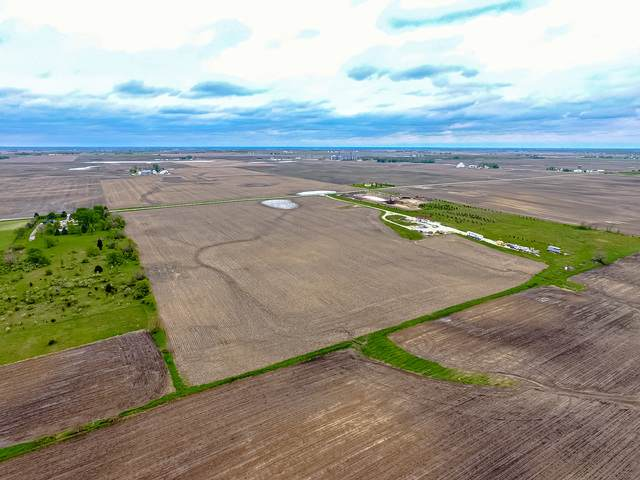 10730 W Offner Road, Peotone, IL 60468 (MLS #10728188) :: Suburban Life Realty