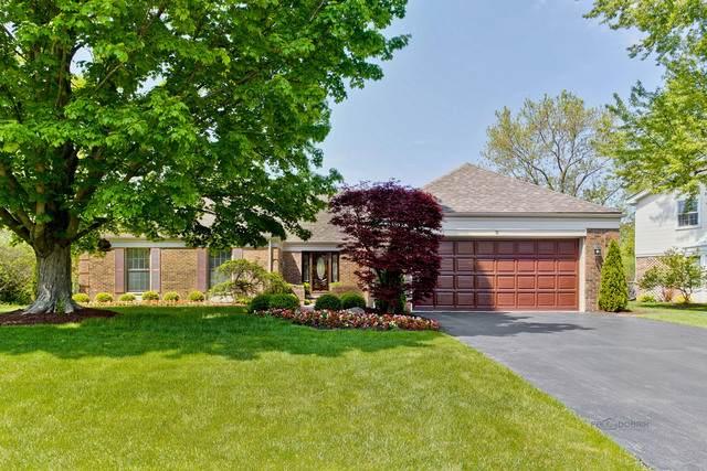 8 Fox Trail, Lincolnshire, IL 60069 (MLS #10728249) :: Helen Oliveri Real Estate