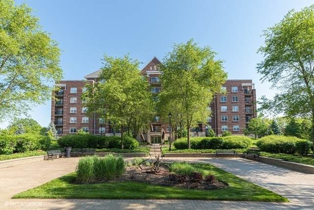 440 W Mahogany Court #306, Palatine, IL 60067 (MLS #10728477) :: John Lyons Real Estate