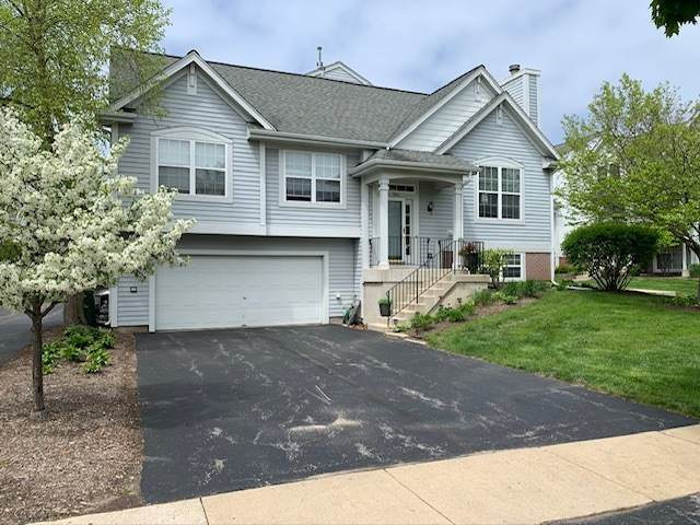 982 Manchester Circle, Grayslake, IL 60030 (MLS #10728574) :: Property Consultants Realty