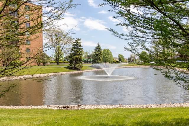 1747 W Crystal Lane #405, Mount Prospect, IL 60056 (MLS #10728611) :: Helen Oliveri Real Estate