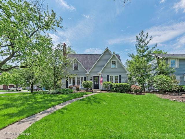 315 Ruby Street, Clarendon Hills, IL 60514 (MLS #10728686) :: Property Consultants Realty