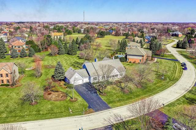 48 Copperfield Drive, Hawthorn Woods, IL 60047 (MLS #10728732) :: Helen Oliveri Real Estate