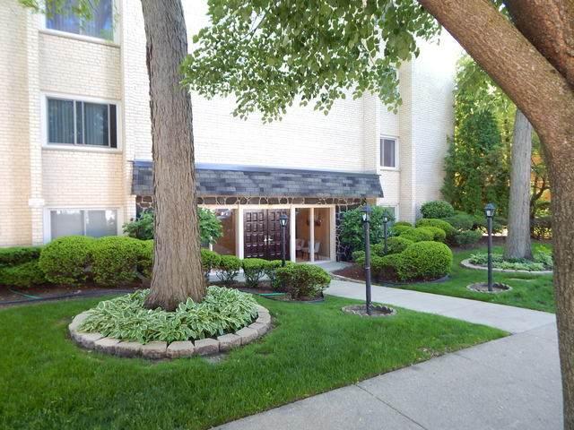 8650 Ferris Avenue #301, Morton Grove, IL 60053 (MLS #10728751) :: Helen Oliveri Real Estate