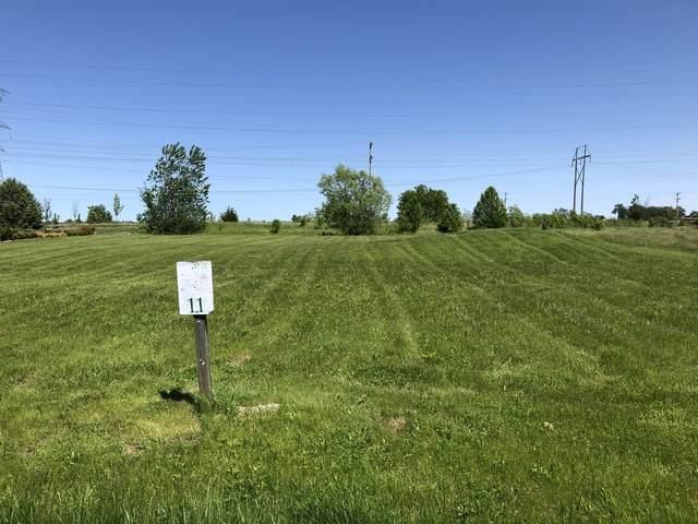18905 S Chestnut Drive, Shorewood, IL 60404 (MLS #10728764) :: Lewke Partners
