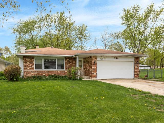 784 Webster Avenue, Bartlett, IL 60103 (MLS #10728783) :: Ryan Dallas Real Estate