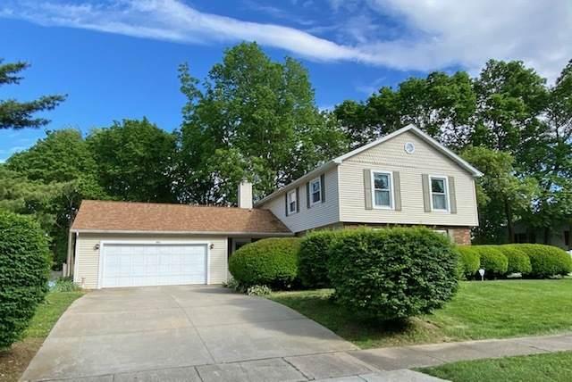304 Indian Hills Drive, Rantoul, IL 61866 (MLS #10728838) :: Ryan Dallas Real Estate