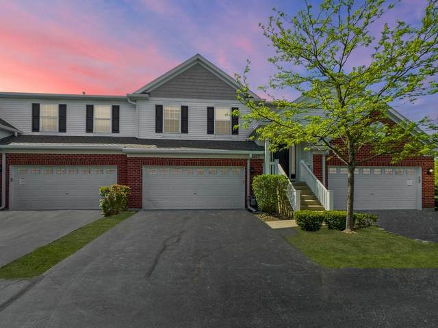 1603 Millbrook Drive, Algonquin, IL 60102 (MLS #10729099) :: Littlefield Group