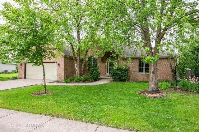 1735 Little Willow Road, Morris, IL 60450 (MLS #10729406) :: Angela Walker Homes Real Estate Group