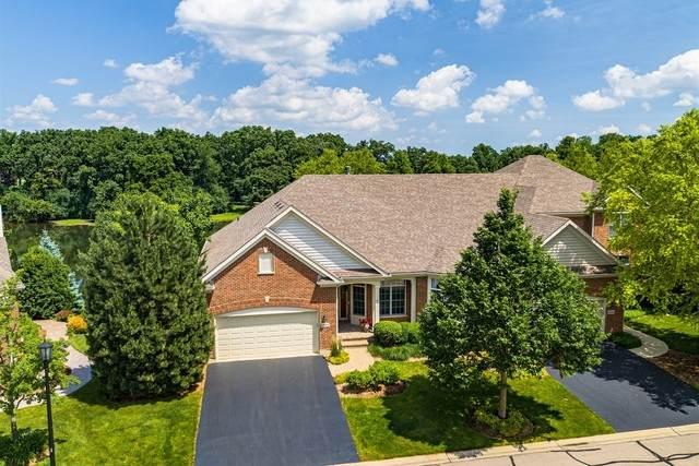 4053 Honeymoon Ridge, Lake In The Hills, IL 60156 (MLS #10729410) :: Suburban Life Realty