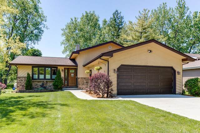 613 Roselle Court, Lake Villa, IL 60046 (MLS #10729480) :: Janet Jurich