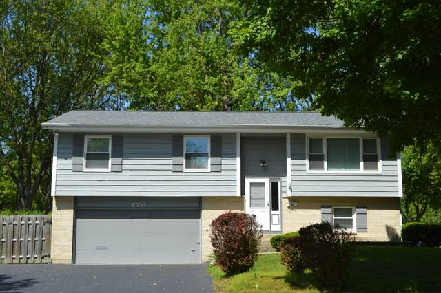 720 Scott Street, Algonquin, IL 60102 (MLS #10729482) :: Littlefield Group