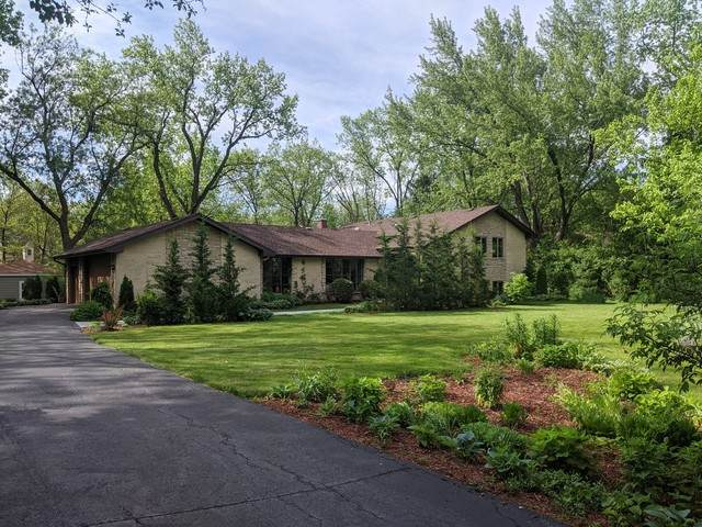 22257 W Little Pond Road, Kildeer, IL 60047 (MLS #10729594) :: Ani Real Estate