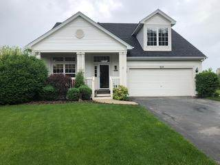 929 Heartland Park Lane, Antioch, IL 60002 (MLS #10729644) :: Suburban Life Realty