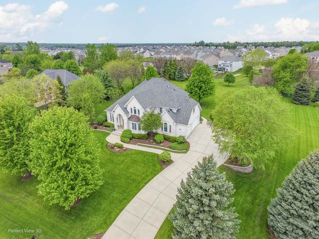 36W686 River Grange Road, St. Charles, IL 60175 (MLS #10729871) :: The Wexler Group at Keller Williams Preferred Realty