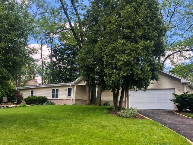 171 Route 53, Glen Ellyn, IL 60137 (MLS #10729875) :: The Wexler Group at Keller Williams Preferred Realty