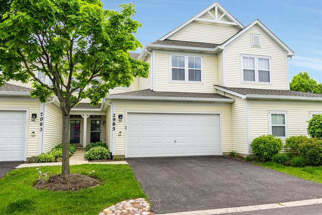 2985 Falling Waters Lane, Lindenhurst, IL 60046 (MLS #10729890) :: Property Consultants Realty