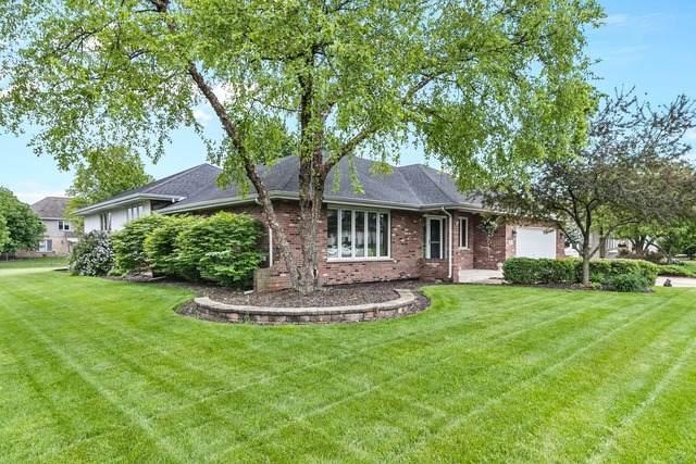 19255 Stonehenge Drive, Mokena, IL 60448 (MLS #10729921) :: Helen Oliveri Real Estate