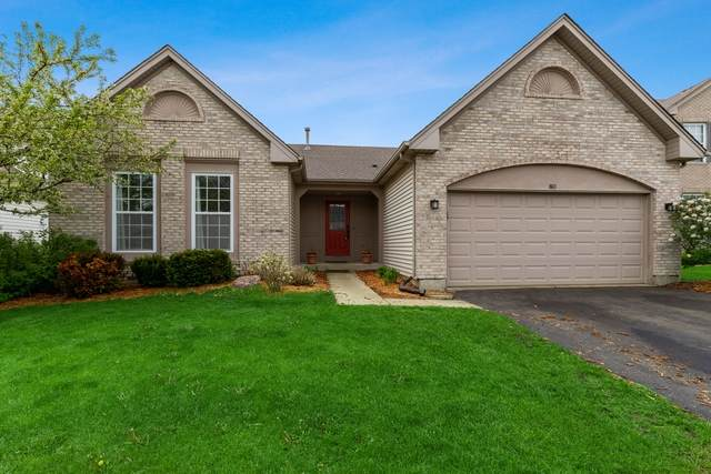 80 Stillwater Drive, Hainesville, IL 60030 (MLS #10730126) :: Property Consultants Realty