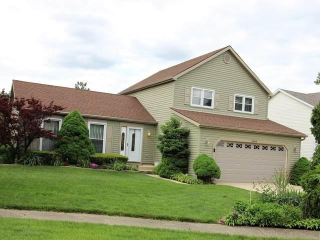 1080 Wilmington, Hoffman Estates, IL 60194 (MLS #10730443) :: The Wexler Group at Keller Williams Preferred Realty