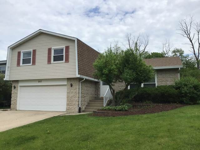 217 S Park Place Drive, Bartlett, IL 60103 (MLS #10730452) :: The Wexler Group at Keller Williams Preferred Realty